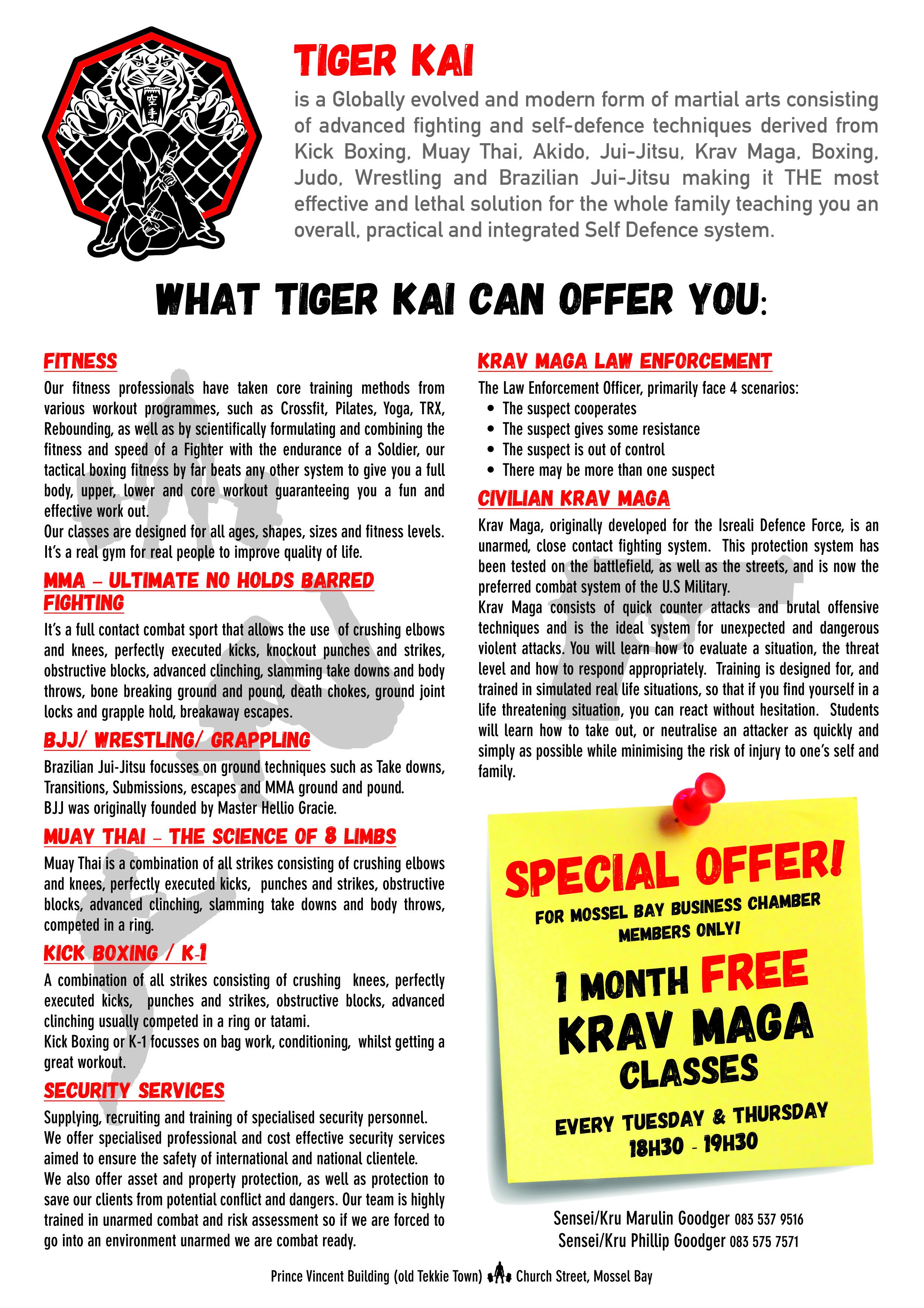 TigerKai_flyer_buschamber